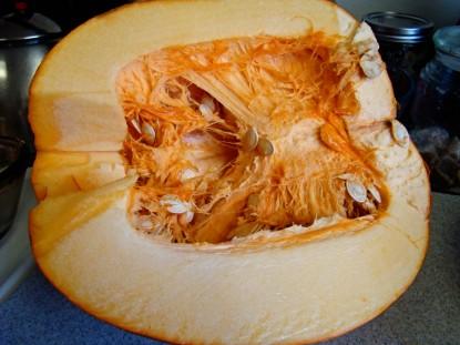 big pumpkin half