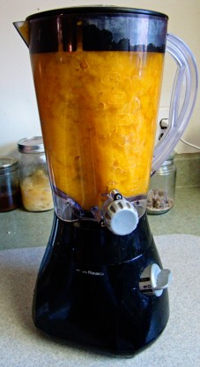 big pumpkin in blender
