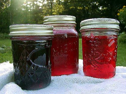 Flower and Herb Jellies