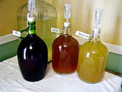 Simple Apple Wine