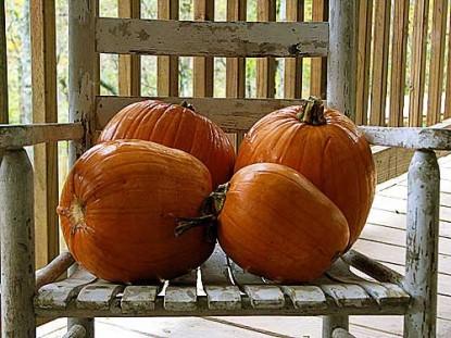 How to Prepare Fresh Pumpkin