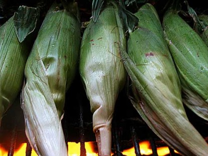 Corn Grilled in the Husk